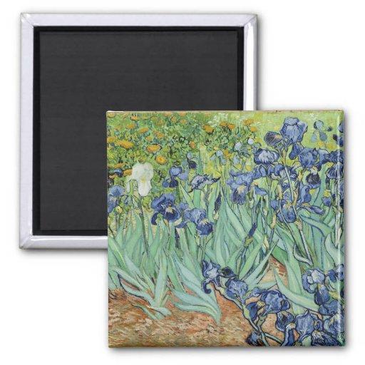 Irises - Van Gogh Magnet