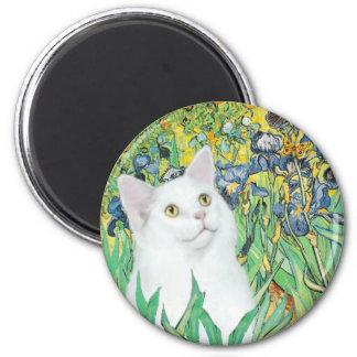Irises - White cat Magnet