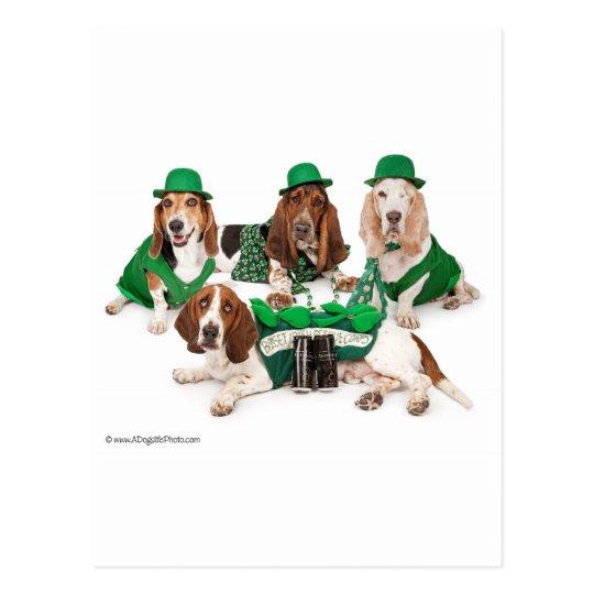 Irish Basset hound quartet Postcard