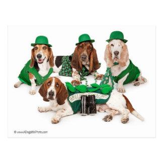 Irish Basset hound quartet Post Cards