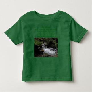 Irish blessing toddler shirt