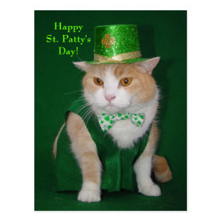 Irish Bubba Kitty Postcard