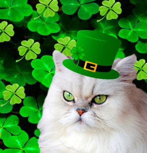 Irish Cat Shower Curtain