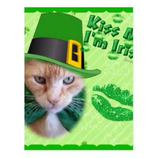 Irish Claude Cat Postcard