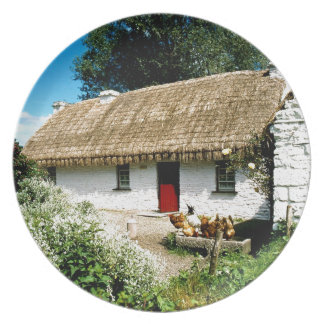 Irish cottage party plate