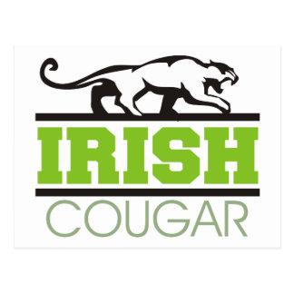 Irish Cougar Gift Postcard
