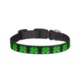 Irish Dog Collar by dalDesign