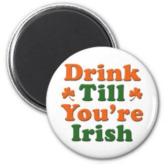 Irish Drinking Saying Magnet