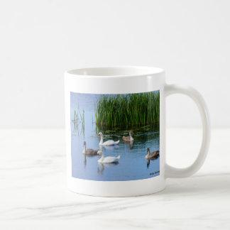 Irish ducks on the River Shannon Coffee Mug