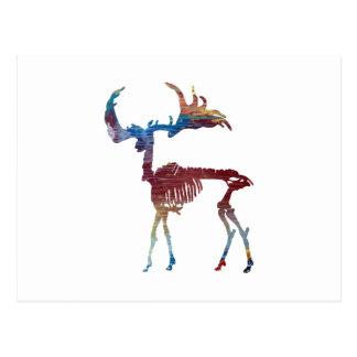 Irish Elk Skeleton Postcard