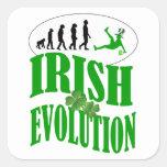 Irish evolution square sticker