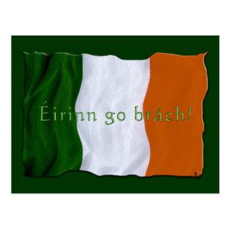 IRISH FLAG GIFT RANGE ~ Eirinn go brach! Postcard