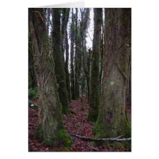 Irish Forest Card