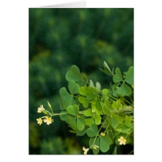 Irish Greens Card