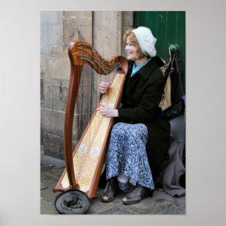 Irish Harpist Poster