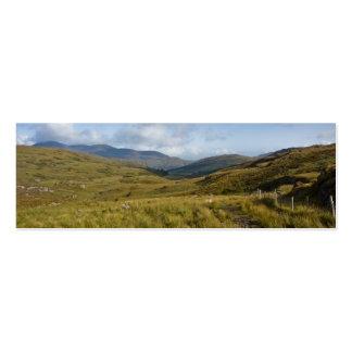 Irish Hills Mini Business Card