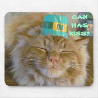 Irish kitty wants kiss mouse pad