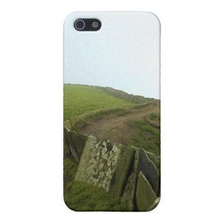 Irish Landscape Case For iPhone SE/5/5s