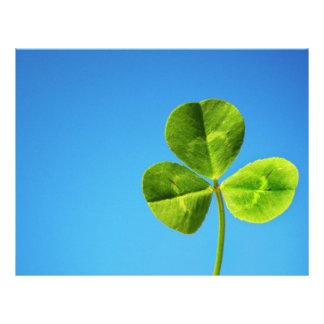 Irish luck letterhead
