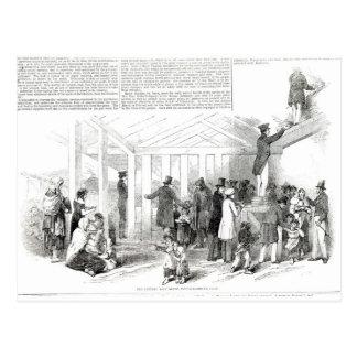 Irish Potato Famine, 1847 Postcard