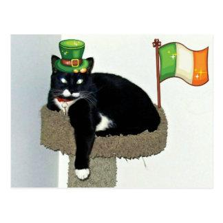Irish Pride Lucy Postcard
