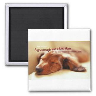 Irish Proverb and Sleeping Dog Magnet
