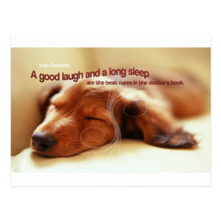 Irish Proverb and Sleeping Dog Postcard
