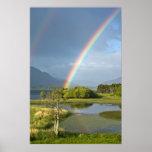 Irish Rainbow Poster