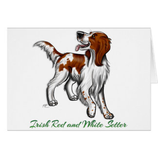 Irish Red and White Setter Card