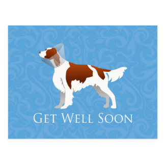 Irish Red and White Setter Get Well Soon Design Postcard