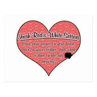 Irish Red and White Setter Paw Prints Dog Humor Postcard