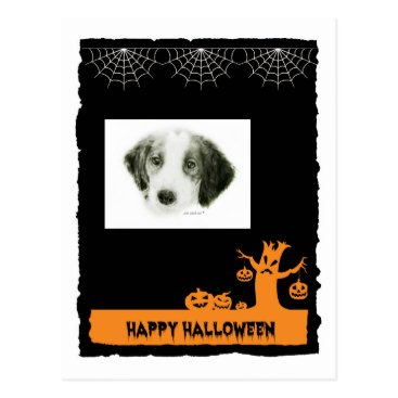Halloween Themed Irish Red & White Setter Halloween Postcard