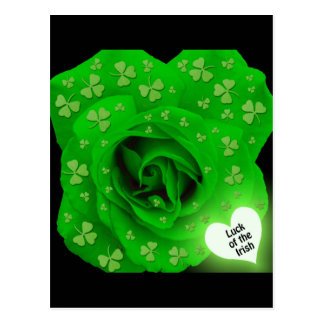 Irish Rose - Luck of the Irish Postcard