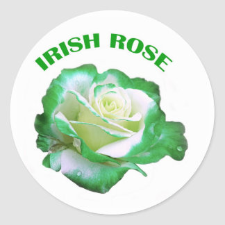 Irish Rose sticker