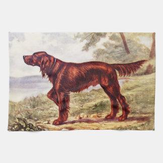 Irish Setter 1900 Illustration of Sporting Dog Hand Towel