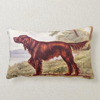 Irish Setter 1900 Illustration of Sporting Dog Pillows