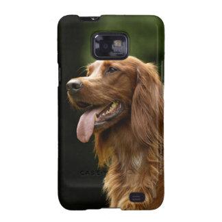 Irish Setter 2 Samsung Galaxy S2 Funda