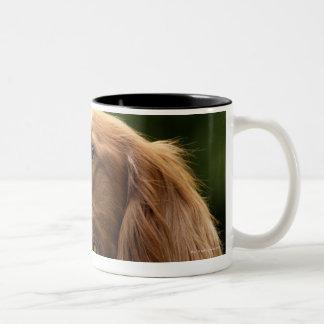 Irish Setter 2 Two-Tone Coffee Mug
