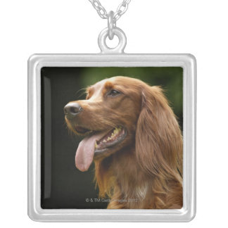Irish Setter 2 Silver Plated Necklace