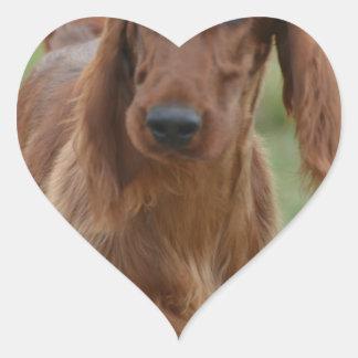 Irish Setter adorable Pegatina En Forma De Corazón