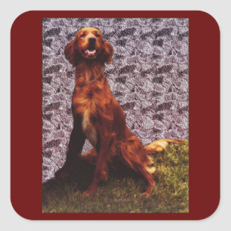 Irish Setter and Patterned Concrete Wall Sticker