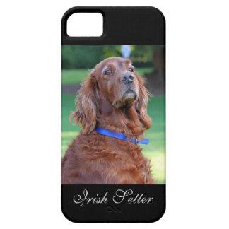 Irish Setter dog beautiful photo portrait, gift iPhone SE/5/5s Case
