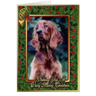 Irish Setter Dog Blank Christmas Card