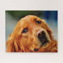 Irish Setter Dog. Jigsaw Puzzle