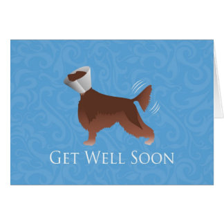 Irish Setter Get Well Soon Silhouette Dog in Cone Card