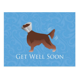 Irish Setter Get Well Soon Silhouette Dog in Cone Postcard