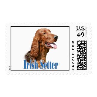 Irish Setter Name Postage Stamp