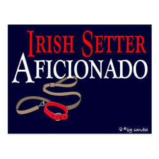 Irish Setter Postcard