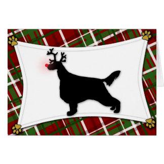 Irish Setter Reindeer Christmas Card