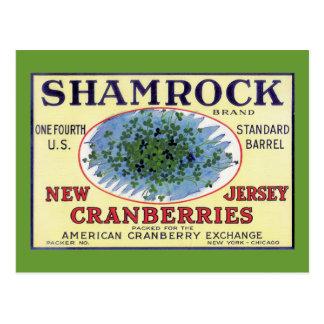 Irish Shamrock New Jersey Cranberry Post Cards